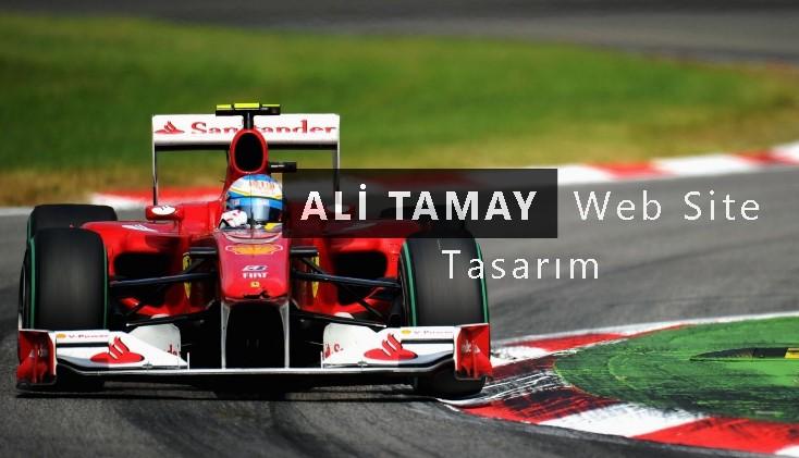 Ali tamay
